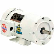 US Motors Washdown, 3 Phase, 5 HP, 3-Phase, 1755 RPM Motor, WD5P2DC