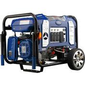 Ford FG11050PBE, 9000/8550 Watts, Portable Generator, Gasoline/LP, Electric/Recoil Start, 120/240V