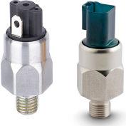 "PVS Sensors 151665 EPA-2-4G-A-SP-13 125-600PSI Model2 Steel 1/4BSPP SPST N.O. 1/4"" Spades HNBR Diap"