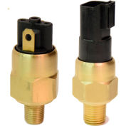 """PVS Sensors PVA-1-2M-A-SP,(Adj. 5-28 IN Hg) Model 1, Brass, 1/8 NPT, SPST( N.O.), 1/4"""" Spades"""