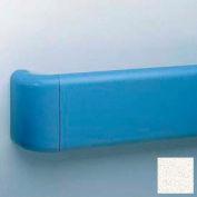 Vinyl Crash Rail-Type Handrail, Aluminum Retainers, 5-1/2'' High, 12' Long, Mission White