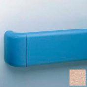 """Heavy-Duty 5.5"""" Face Handrail/Wall Guard W/Aluminum-Reinforced Return & Retainer, 12' Long, Doeskin"""