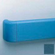 "Heavy-Duty 5.5"" Face Handrail/Wall Guard W/Reinforced Return & Retainer, 12' Long, Alexis Bl"