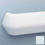"Flex-Action Triangular Handrail/Wall Guard, 5 3/8"" Face, Aluminum Retainer, 12' Long, Blue Ice"