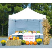 Goliath™ Instant Canopy With Sides 10'L x 10'W - White