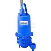 "Power-Flo 2"" Pump, Double Seal, 3HP, 3450RPM, 460V, 3PH, 60Hz."