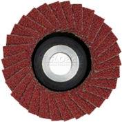 "Flap Disc For LW/E, 2"" Diameter (50mm), 100 Grit"