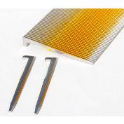 "Porta-Nails™ 2"" X 16 Ga Glued Stainless-Steel L-Head Flooring Nails 47080 (1000 Pack)"