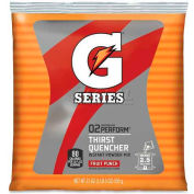 Gatorade Thirst Quencher Mix Pouch, Fruit Punch, 21 Oz