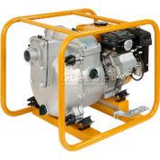 Subaru Trash Pump, Model PKX201T, 2 Inch Suction/Discharge Port, 185 GPM