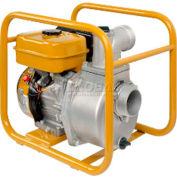 Subaru Centrifugal Pump, Model PKX320, 3 Inch Suction/Discharge Port, 256 GPM