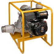 Subaru Diaphragm Pump, Model PTX301D, 3 Inch Suction/Discharge Port, 66 GPM