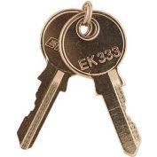 RIB® Replacement Keys KEYSET, Set Of Two, For Key Latched Metal Housings