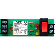 "RIB® Track Mount Override Switch PSMS1, 4"", 24VAC, W/LED Indicators"