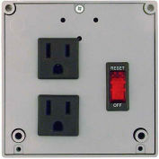 RIB® Enclosed Power Control Center PSPT2RB10, 10A Breaker/Switch, 120VAC, 2 Outlets