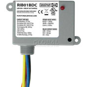 RIB® Dry Contact Input Relay RIB01BDC, Enclosed, 120VAC, 20A, SPDT