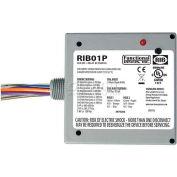 RIB® Enclosed Power Relay RIB01P, 20A, DPDT, 120VAC