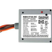 RIB® Enclosed Power Relay RIB01P30-NC, 30A, DPST, 120VAC, Normally Closed