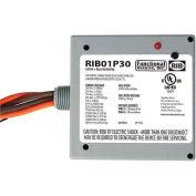 RIB® Enclosed Power Relay RIB01P30, 30A, DPST, 120VAC