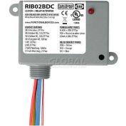 RIB® Dry Contact Input Relay RIB02BDC, Enclosed, 208-277VAC, 20A, SPDT