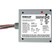 RIB® Enclosed Power Relay RIB02P, 20A, DPDT, 208-277VAC