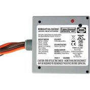 RIB® Enclosed Power Relay RIB02P30-NONC, 30A, DPST-NONC, 208-277VAC