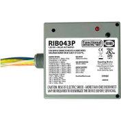 RIB® Enclosed Power Relay RIB043P, 20A, 3PST, 480VAC