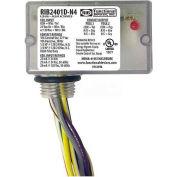 RIB® Enclosed Relay RIB2401D-N4, 10A, NEMA 4/4X, DPDT, 24VAC/DC/120VAC