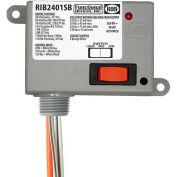 RIB® Enclosed Power Relay RIB2401SB, 20A, SPST-NO, 24VAC/DC/120VAC, Override