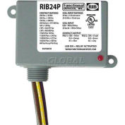 RIB® Enclosed Power Relay RIB24P, 20A, DPDT, 24VAC/DC