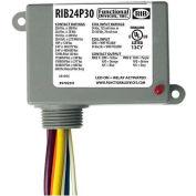 RIB® Enclosed Power Relay RIB24P30, 30A, DPDT, 24VAC/DC