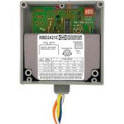 RIB® Enclosed Relays RIBD2421C, 10A, SPDT, 24VAC/DC/120-277VAC