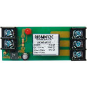 "RIB® Track Mount Relay RIBMN12C, 2.75"", 15A, SPDT, 12VAC/DC"