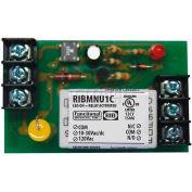 "RIB® Track Mount Relay RIBMNU1C, 2.75"", 15A, SPDT, 10-30VAC/DC/120VAC"