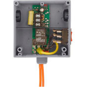 RIB® Enclosed Relay RIBT2401SB, Hi/Low Sep. 20A, SPST, 24VAC/DC/120VAC, Override