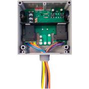 RIB® Enclosed Relay RIBT242B, Hi/Low Sep. 20A, 2 SPDT, 24VAC/DC