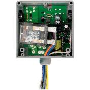 RIB® Enclosed Relay RIBTE02P, Hi/Low Sep, 20A, DPDT, 208-277VAC Power, 5-30VAC/DC Control