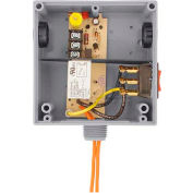 RIB® T Style Relay RIBTH1S, Enclosed, Hi/Low Sep. 10A, SPST, 10-30VAC/DC/208-277VAC, Override