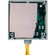 RIB® Enclosed Internal AC Sensor W/Relay RIBX243PF, Fixed, 20A, 3PST, 24VAC/DC