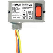 RIB® Enclosed Switch SIB02S, 20A, Maintained 3 Position, Center Off, 3 Wire