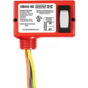 RIB® Enclosed Switch SIB04S-RD, 20A, Maintained 2 Position, 3 Wire, Red Housing