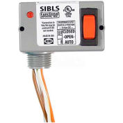 RIB® Enclosed Switch SIBLS, 5A, 30VAC/DC, Maint. 3 Position, Center Off W/LED