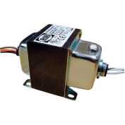 RIB® Transformer TR100VA008, 100VA, 480/277/240/208-120V, Dual Hub, Foot Mount, Circuit Breaker