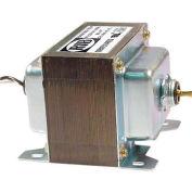 RIB® Transformer TR175VA002, 175VA, 120-24V, Dual Hub, Foot Mount
