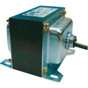 RIB® Transformer TR175VA003, 175VA, 120-24V, Single Hub, Foot Mount