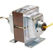 RIB® Transformer TR40VA002, 40VA, 120-24V, Dual Hub, Foot Mount
