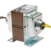 RIB® Transformer TR50VA002, 50VA, 120-24V, Dual Hub, Foot Mount