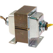 RIB® Transformer TR50VA007, 50VA, 277-24V, Dual Hub, Foot Mount