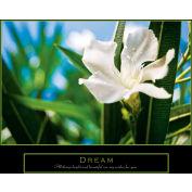 """Crystal Art Gallery - Dream Canvas - 20""""W x 16""""H, Canvas Wrap"""