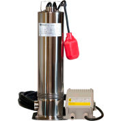 "RainFlo RF-075 3/4HP Submersible Pump W/ 1-1/4"" Threaded Inlet - 115V/60Hz"